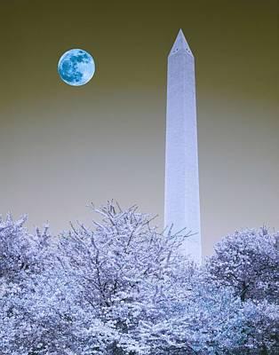 Winter Animals - The Washington Monument in Washington, D.C. Original image from Carol M. Highsmith v3 by Celestial Images