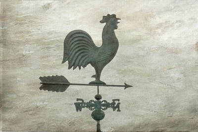 Digital Art - The Weather Vane by Ramona Murdock