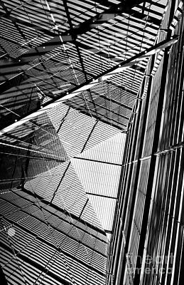 Photograph - The Web Monochrome by Tim Gainey