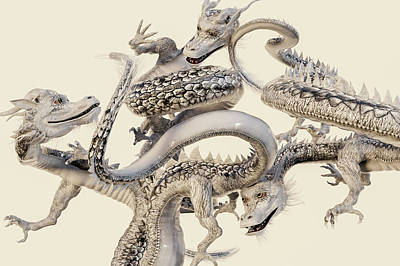 Reptiles Royalty-Free and Rights-Managed Images - The White Dragons by Betsy Knapp