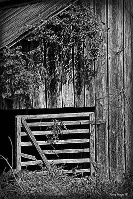Photograph - The Wooden Gate by Wesley Nesbitt
