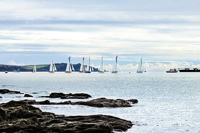 Photograph - The Working Boats Race Falmouth 2018 by Terri Waters