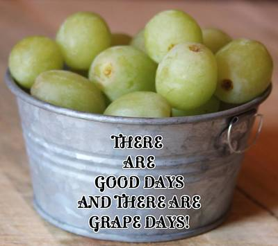 Priska Wettstein Pink Hues - There Are Good Days And There Are Grape Days by Cathy Lindsey
