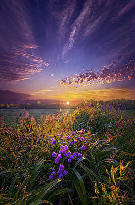 Photograph - They Speak Without A Sound Or Word by Phil Koch