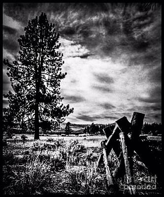 Photograph - They Talked Over Fences by Jennifer Lake