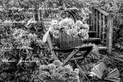 Photograph - Thinking Of You In Black And White by Debra and Dave Vanderlaan