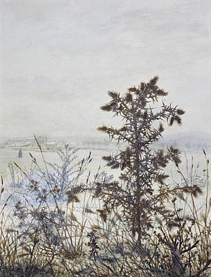 Drawing - Thistles And Weeds by Leon Bonvin