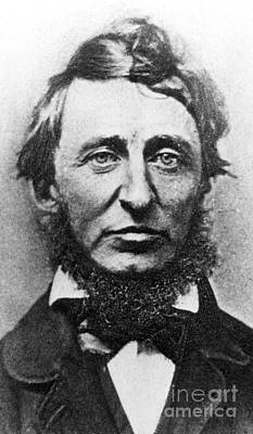Photograph - Thoreau  by American School