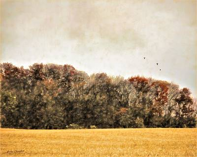 Digital Art - Three Crows And Golden Field by Diane Chandler
