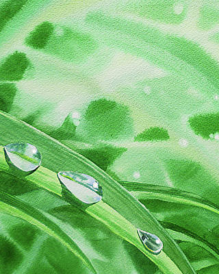Royalty-Free and Rights-Managed Images - Three Dew Drops Realism In Watercolor by Irina Sztukowski