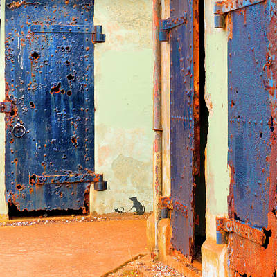 Photograph - Three Doors by Jessica Levant