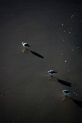 Photograph - Three by Eric Christopher Jackson