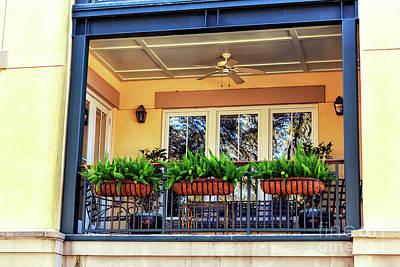 Photograph - Three Ferns In Charleston by John Rizzuto
