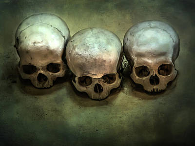 Photograph - Three Human Skulls by Jaroslaw Blaminsky