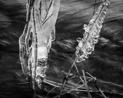 Photograph - Three Mile River Vi Bw by David Gordon
