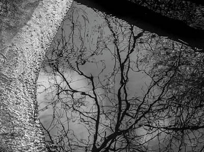 Photograph - Three Mile River Viii Bw by David Gordon