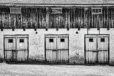 Photograph - Three Sets Of Doors - Romania by Stuart Litoff