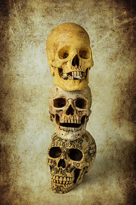 Photograph - Three Stacked Skulls by Garry Gay