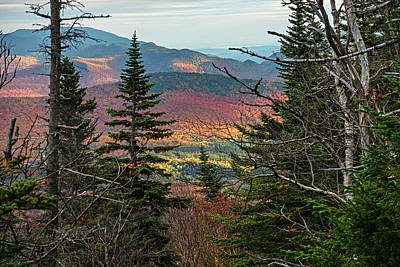 Photograph - Through The Trees As Seen From Wright Mountain Adirondack by Toby McGuire