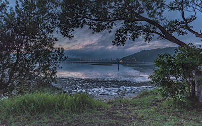Photograph - Through The Trees - Dawn Waterscape by Merrillie Redden