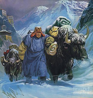 Yak Wall Art - Painting - Tibet by Angus McBride