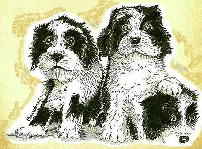 Painting - Tibetan Terriers by Terry Banderas