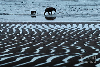 Photograph - Tide's Out - Lake Clark-ak  by Sandra Bronstein