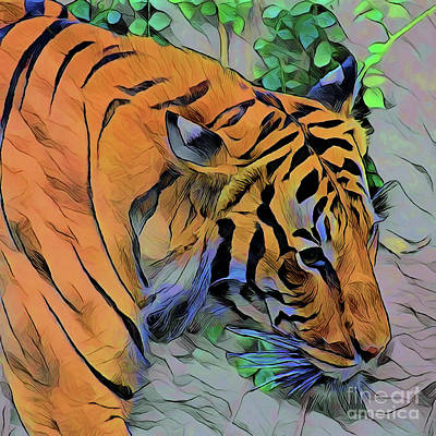 Painting - Tiger A1914 by Ray Shrewsberry