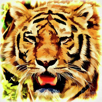Painting - Tiger A1921 by Ray Shrewsberry