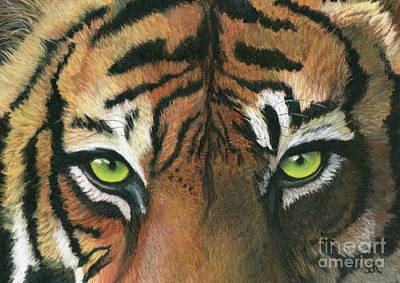Pastel - Tiger Eyes by Sheryl Elen