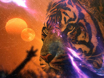 Animals Royalty-Free and Rights-Managed Images - Tiger Moon by Elie Wolf