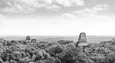 Photograph - Tikal Guatemala Mayan Ruins Black And White by Tim Hester