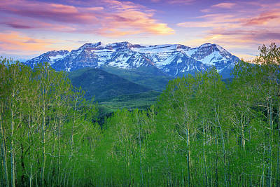 Royalty-Free and Rights-Managed Images - Timp with Spring Aspens by Johnny Adolphson