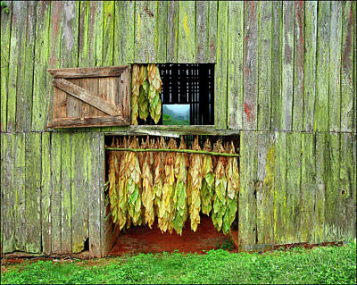 Wall Art - Tapestry - Textile - Tobacco Barn Tapestry by Ron Morecraft