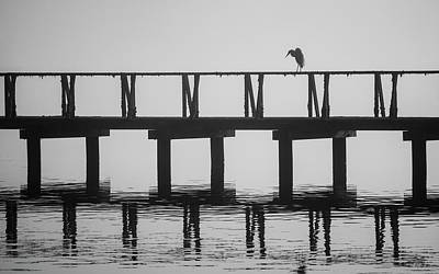 Photograph - Tomales Bay Vi Bw by David Gordon