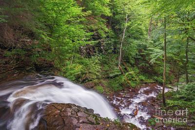 Photograph - Top Of The Falls by Sharon Seaward