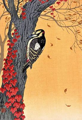 Woodpecker Wall Art - Painting - Top Quality Art - Great Spotted Woodpecker by Ohara Koson