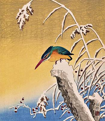 Kingfisher Wall Art - Painting - Top Quality Art - Kingfisher In Snow by Ohara Koson