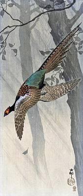 Pheasant Wall Art - Painting - Top Quality Art - Pheasant by Ohara Koson