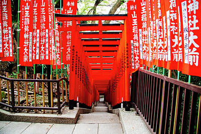 Photograph - Torii in Tokyo by Jonathan Keane