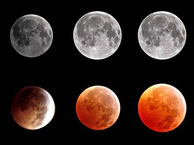 Photograph - Total Eclipse Of Heart Sequence by Joannis S Duran / Freelance Photographer