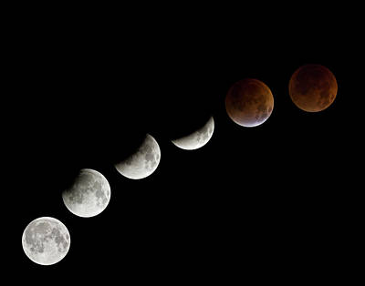 Photograph - Total Lunar Eclipse, 28 August 2007 by Diane Miller