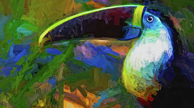 Photograph - Toucan Tambopata Abstract by Alice Gipson