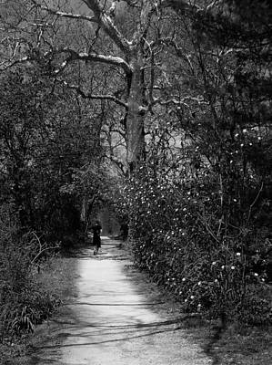 Photograph - Tow Path - Spring - Black And White by Val Arie