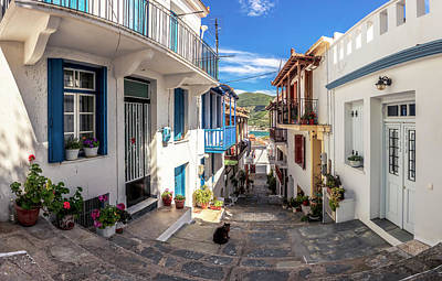 Photograph - Town Of Skopelos by Evgeni Dinev