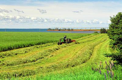 Photograph - Tractor Raking Hay, Cape Traverse by Barrett & Mackay