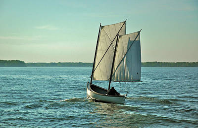 Photograph - Tradional Skiff On The Chesapeake Bay by Mark Duehmig