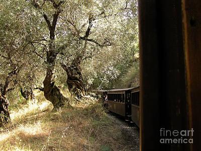 Typography Tees - Train and Olive Trees by Zoran Berdjan