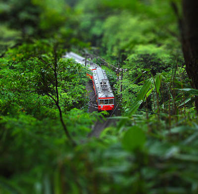 Photograph - Train Through The Woods by Shigerutanida