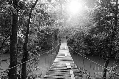 Photograph - Tranquil Forest Footbridge Black And White by Tim Hester